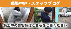 現場中継・スタッフブログ