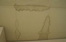 雨漏り画像3